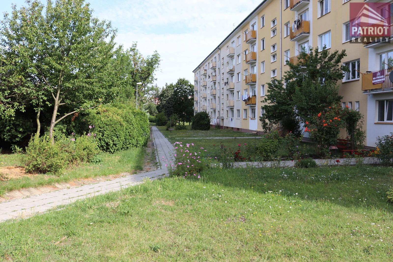 3+1 Karafiátová - Olomouc  PRODÁNO - 9